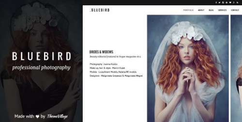 Bluebird - Design for Professional Photographers