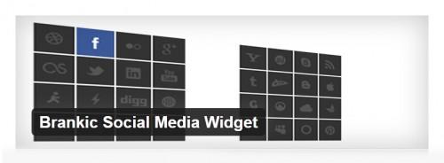 Brankic Social Media Widget