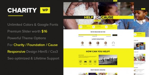 Charity - Foundation, Fundraising WP Theme