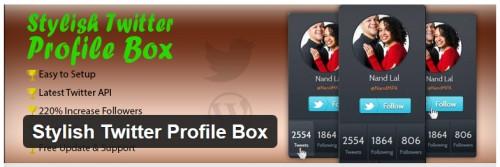 Stylish Twitter Profile Box