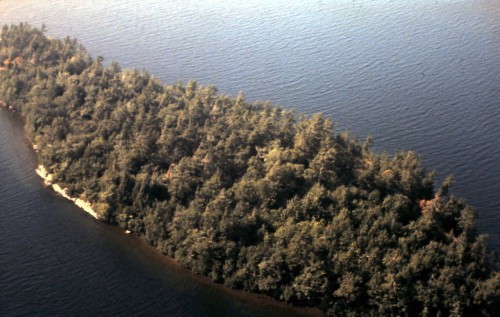 Rose Island - Aerial View