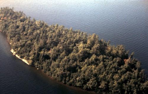 Rose Island - Aerial View